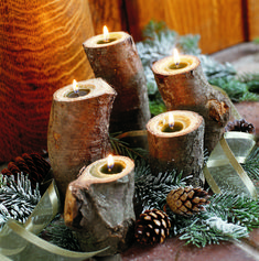 You could easily drill out big holes in logs and put candles in them. Cut some different sizes and wrap twine or ribbon around them and they would be cute. IDK about the whole not taking stuff from the forest thing though. They may not like that lol