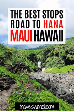 Planning a Hawaiian vacation to the island of Maui? The road to Hana is a must-do. This guide will provide you with information on all of the best stops along the road to Hana, Maui Hawaii. Travelswitheli.com Hawaii Vacation Tips, Hawaii Travel, Usa Travel, Travel With Kids, Family Travel, State Park Cabins, Road To Hana, Thing 1, Maui Hawaii