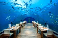Stunning underwater restaurant in Maldives