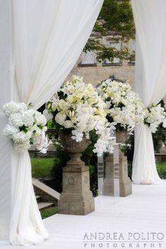 Breathtaking white flowers. Andrea Polito Photography
