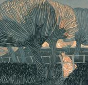 the water meadows - annie soudain Forest Drawing, Forest Sunset, Tree Artwork, Annie, Landscape Paintings, Landscapes, Art Images, Art Inspo, Illustration Art