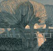 the water meadows - annie soudain
