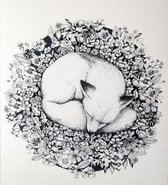 Sleeping in Flowers is a hand drawn pen and ink drawing, illustrating a sleepy fox in a bed of flowers. The Fox illustration is a high quality ink