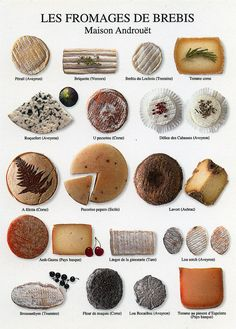 Sheep Cheeses of France Fromage Cheese, Queso Cheese, Wine Cheese, Wine Recipes, Cooking Recipes, Sheep Cheese, Paris Food, Cheese Lover, Cheese Platters