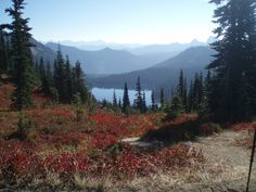 7 Fall Color Walks and Hikes in the South Sound - ParentMap