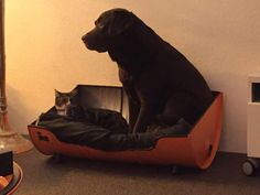 Stoere Hondenmand Tough Dogbed