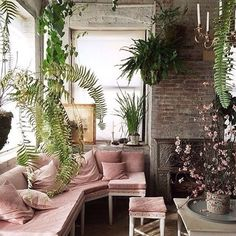 Bellocq Tea Ateliers' pink sofa and hanging plants