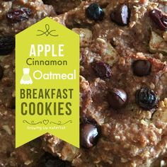 Apple Cinnamon Oatmeal Breakfast Cookies - Growing Up KaterTot