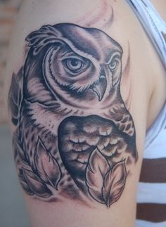Black and Grey Owl
