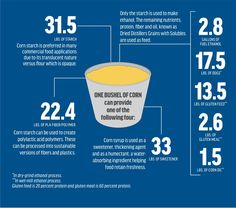 """""""A bi-product of ethanol production from corn is distillers grains - a high-quality and high-protein feed source used in many livestock rations. See the photo below for what else one can come from a bushel of corn. Agriculture Facts, High Protein, Grains, Fiber, Canning, Livestock, Colorado, Twitter, Food"""