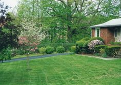 https://flic.kr/p/MzjQwf | Dogwood, Azalea, tulip, Geranium and others at my house front garden in the spring