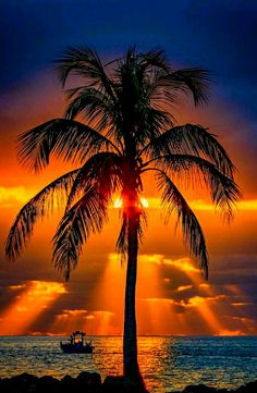 Vacation Places, Best Vacations, Beautiful Sunset, Beautiful Beaches, Scenic Photography, Nature Photography, Nature Pictures, Cool Pictures, Clearwater Beach Florida