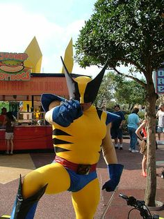 Wolverine at Islands of Adventure.