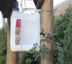 recycled crafts for kids and adults, handmade bird feeders recycling plastic bottles Reuse Plastic Bottles, Plastic Recycling, Plastic Bottle Crafts, Recycled Bottles, Bird Feeder Plans, Bird House Feeder, Diy Bird Feeder, Recycled Crafts Kids, Fun Crafts