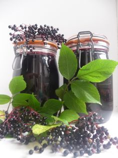 Homemade Elderberry Tincture ~ Ever wondered whether there was a herbal remedy you could make yourself, which might help prevent winter viruses like 'flu taking hold? This elderberry tincture recipe has been used for generations, and it does just that!