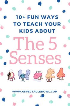 Fun Ways to Teach Your Kids About the 5 Senses - Teaching kids about the five senses can be a lot of fun and hands-on! Here are some ways to help kids understand and to teach them how to use their five senses! Parent Resources, Homeschooling Resources, Homeschool Curriculum, Teaching Kids, Toddler Learning, Toddler Play, Creative Teaching, Teaching Science, How To Speak Spanish