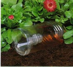 Slug traps Any gardener has his or her own war on slugs, short of going out at night with a torch and collecting them up for salting there did not appear to be a cheaper alternative to these pests…until now. I first saw this in the Gardener's world magazine...