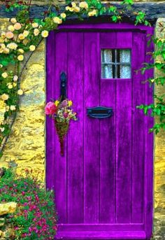 Brightly painted shed door or garden gate.