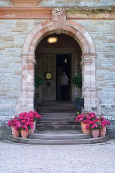Beautiful entrance to Castle Leslie house, we used gorgeous big hydrangea plants in terracotta pots to dress the entrance and add a bit of colour. #reidsflorists #castlelesliewedding