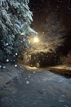 Falling Snow at night...one of my favorite childhood memories was when my family would bundle up after supper and take a walk in the dark around the neighborhood after a snowfall! It was so bright and quiet!!!! ....Then come home for hot chocolate!!!!!