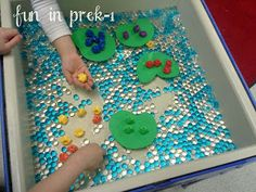 Frogs in the Bog Sensory Table - Fun in PreK-1: A Picture Palooza of Animal Homes & Life Cycles