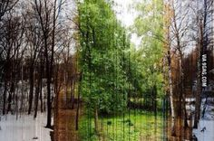 A picture in 365 slices. Each is one day of the year!