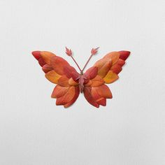 Using flowers, leaves, twigs, and seeds, Canadian artist Raku Inoue creates intricate portraits of insects. Seed Art, Leaf Photography, Composition, Pressed Flower Art, Insect Art, Nature Crafts, Art Nature, Canadian Artists, Flower Crafts