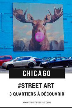 Découvrir le Street Art à Chicago
