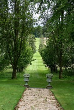 Landscape that creates a perfect view - gravel path, pair of urns, allee of trees