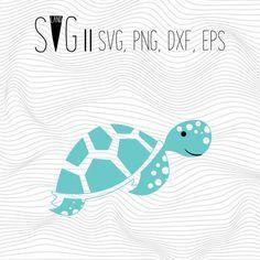 Turtle Svg Turtle Svg Files Turtle Tortoise Svg Files For