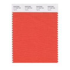 2004 - Pantone Color of the Year (Tigerlily) PANTONE 17-1456