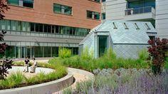 legacy salmon creek medical center - Google Search