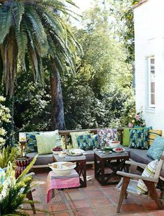 my dream backyard, palm trees and all