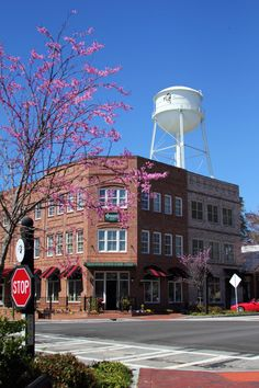 13 Small Towns in Georgia That Are Worth the Drive - Things To Do on the Southside - Travel Senoia Georgia, Georgia Usa, Atlanta Georgia, Pine Mountain Georgia, Oh The Places You'll Go, Places To Visit, Small Town America, City Aesthetic, The Villain