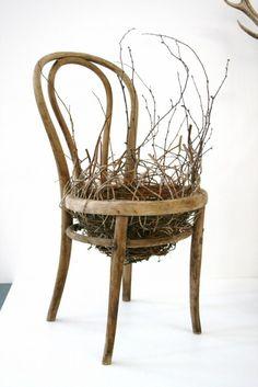 """""""for the birds"""" by harriett goodal"""