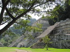 Fell in love with the beauty of Palenque and it's jungle location!