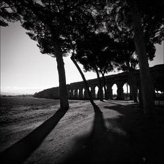 Parco degli Acquedotti, Roma. Luca Guerriby: Italian Wayssource: https://www.flickr.com/photos/lucaguerri/