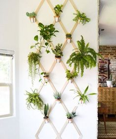 Make your walls really come alive—show off your potted plants with this fun geometric idea. Create a trellis pattern with thin strips of wood and nails. Here, the plants are secured to the wood strips with DIY leather holders and nails, but you can use pipe clamps, too.