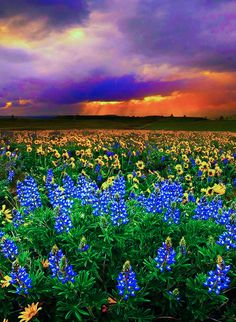 Summer Storm, The Dalles, Washington  photo via djferre