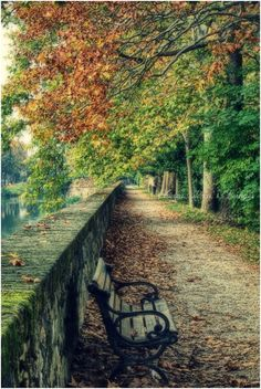 'Autumn in the city' by Chiara Stecca on 500px