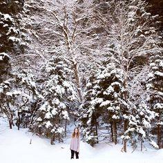 More snow means one thing. More snow pics ❄️  .  .  .  #utahphotographer #utahphotography #utahmountains #utahisrad #utahhair #winter #winterfashion #winterphotography #winterphotoshoot #picoftheday