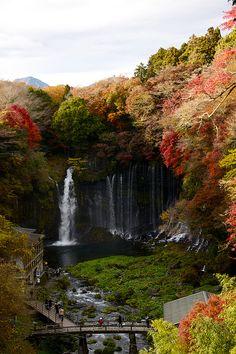 Autumn, Shiraito Falls, Fujinomiya, Japan; photo via discolor