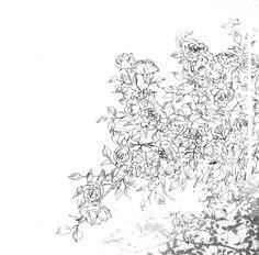 #art #illustration #drawing #sketch #flowers #bush #plant #greenery