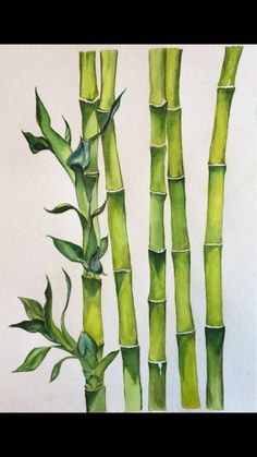 Bamboo Drawing, Watercolor Art, Art Painting, Plant Painting, Chinese Art Painting, Nature Art Prints, Wall Art Designs, Painting, Bamboo Art