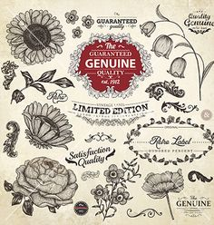 Vintage flowers and labels set vector