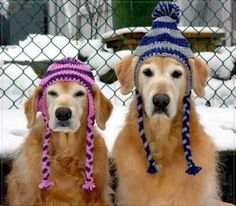 Mens Winter Hats for Cool Guys! -I know how hard it is to find a hat with sex appeal! A hat that makes you look cool and yet keeps you warm....