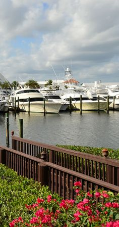 Admirals Cove makes the perfect home for the boating enthusiast! http://www.waterfront-properties.com/jupiteradmiralscove.php