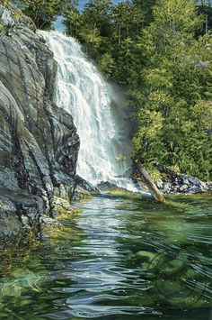 """""""Cassel Falls"""" watercolor by artist Carol Evans. A wonderful waterfall crashes down over rocks into the sea below. I love how the white waterfall reflects over the still water, but you can still see such great details under the water. Watercolor Landscape, Landscape Art, Landscape Paintings, Watercolor Paintings, Watercolors, Watercolor Scenery, Watercolor Paper, Beautiful Waterfalls, Beautiful Landscapes"""