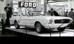 Lincoln as well 1968 Ford F100 Truck Schematic as well 1965 Mgb Wiring Diagram moreover Satinschwarzrimsbmwe46 blogspot   2012 01 britishracing furthermore 6071. on 1974 ford paint colors