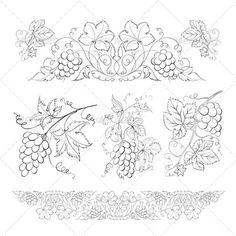 Hand Drawn Grape Set - Flowers & Plants Nature